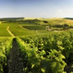 French_Wine-Region