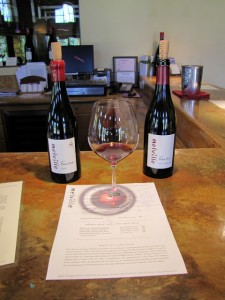 Pinot Noir at Melville Winery
