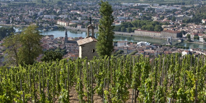 Jean-Louis Chave: Five Centuries of Winemaking Heritage