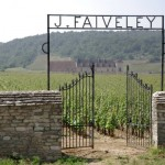 Faiveley Vineyards at Clos Vougeot
