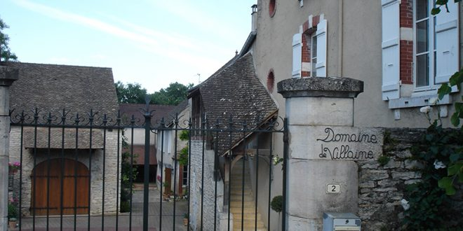 Domaine A. and P. de Villaine | Respecting Mother Nature in Burgundy