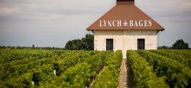 Futures 2016: The 2016 vintage at Chateau Lynch-Bages