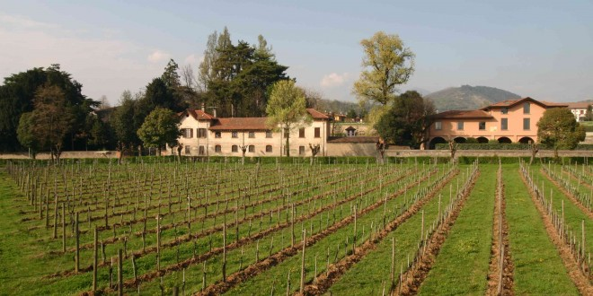 Franciacorta   Italy's Finest Sparkling Wines