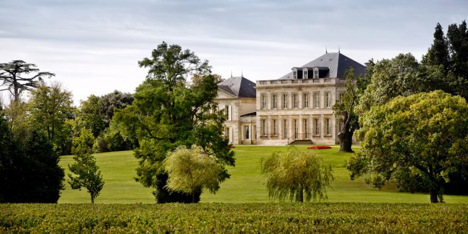 Chateau Phelan Segur: A Great Diversity of Terroir