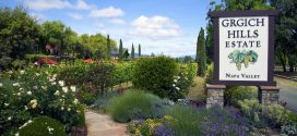 Grgich Hills Estate | An Icon of Napa Valley